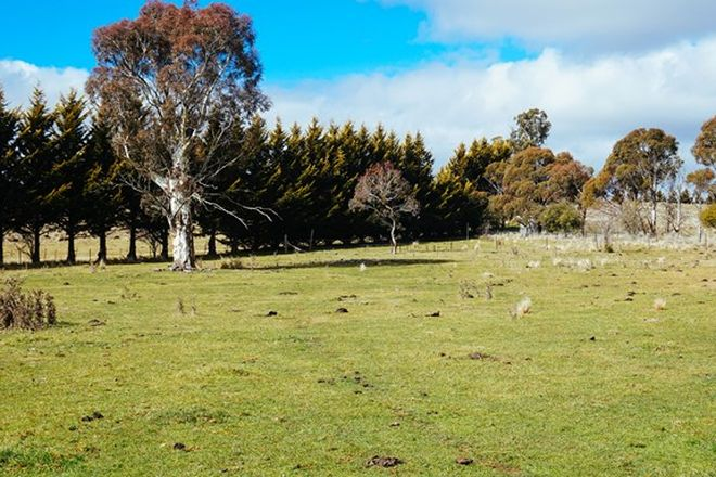 Picture of 5401 MONARO HWY, COOMA NSW 2630