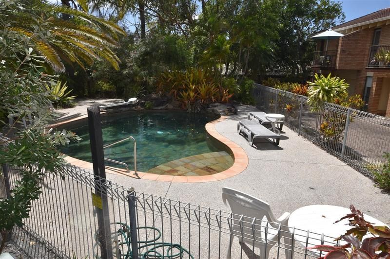 7/16 Wildflower Street, Sunshine Beach QLD 4567, Image 2