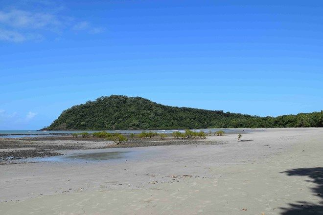 Picture of 90 Rykers, CAPE TRIBULATION QLD 4873