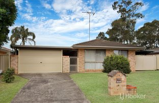 Picture of 12 Jacaranda Place, Doonside NSW 2767