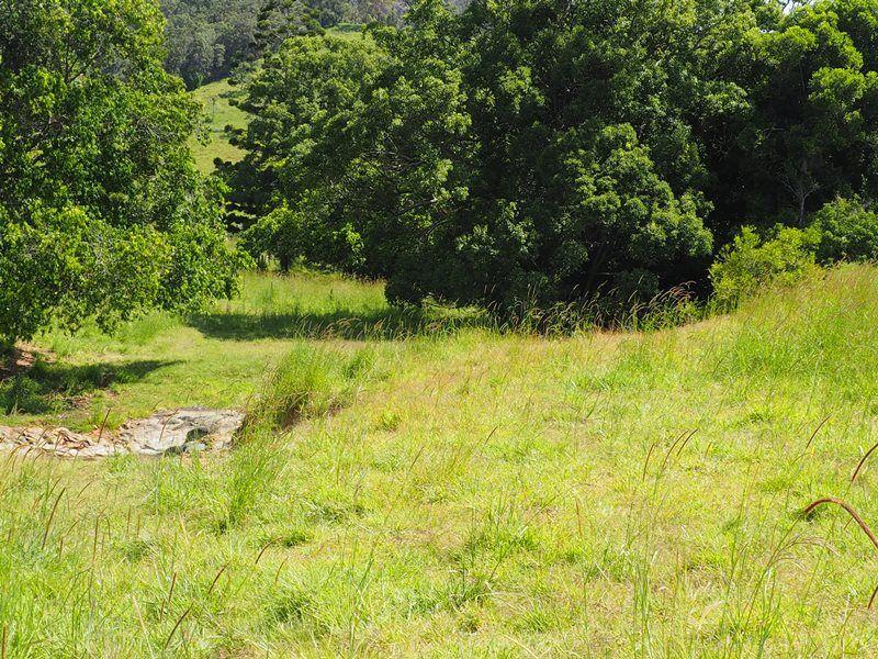 Lot 5 Cedar Pocket Road, Cedar Pocket QLD 4570, Image 2