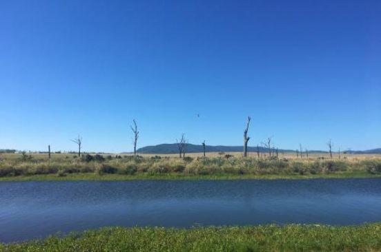 Esk-Kilcoy, Hazeldean QLD 4515, Image 2