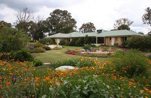 Picture of 18 Vallencia Drive, Murrumbateman NSW 2582