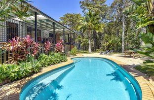Picture of 11 Doncaster  Place, Hyland Park NSW 2448