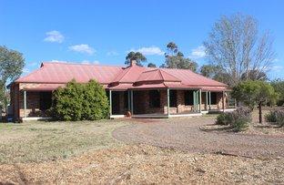 28 Gray St, Scone NSW 2337
