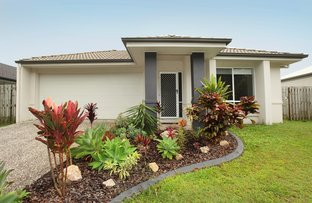 Picture of 25 Red Cedar Street, Sippy Downs QLD 4556