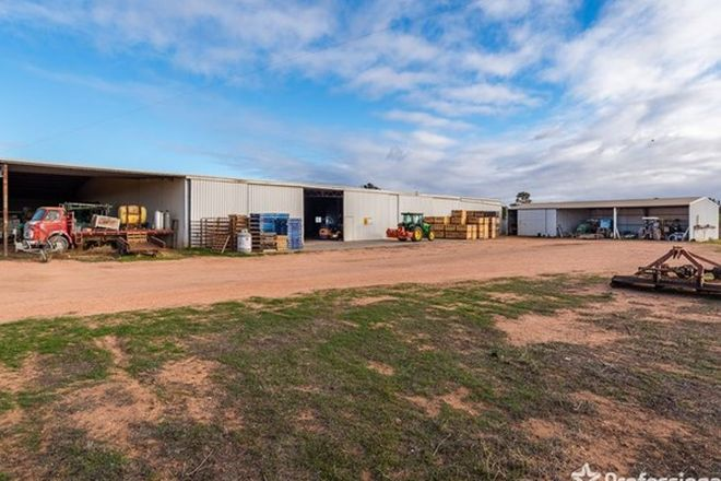 Picture of 2756 Tapalin Mail Road, EUSTON NSW 2737