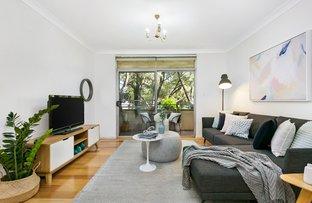 7/44 Milton Street, Ashfield NSW 2131