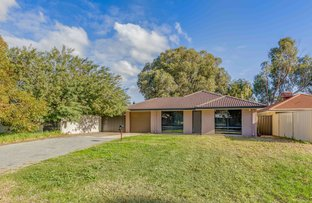 16 Wedgetail Court, Brookdale WA 6112