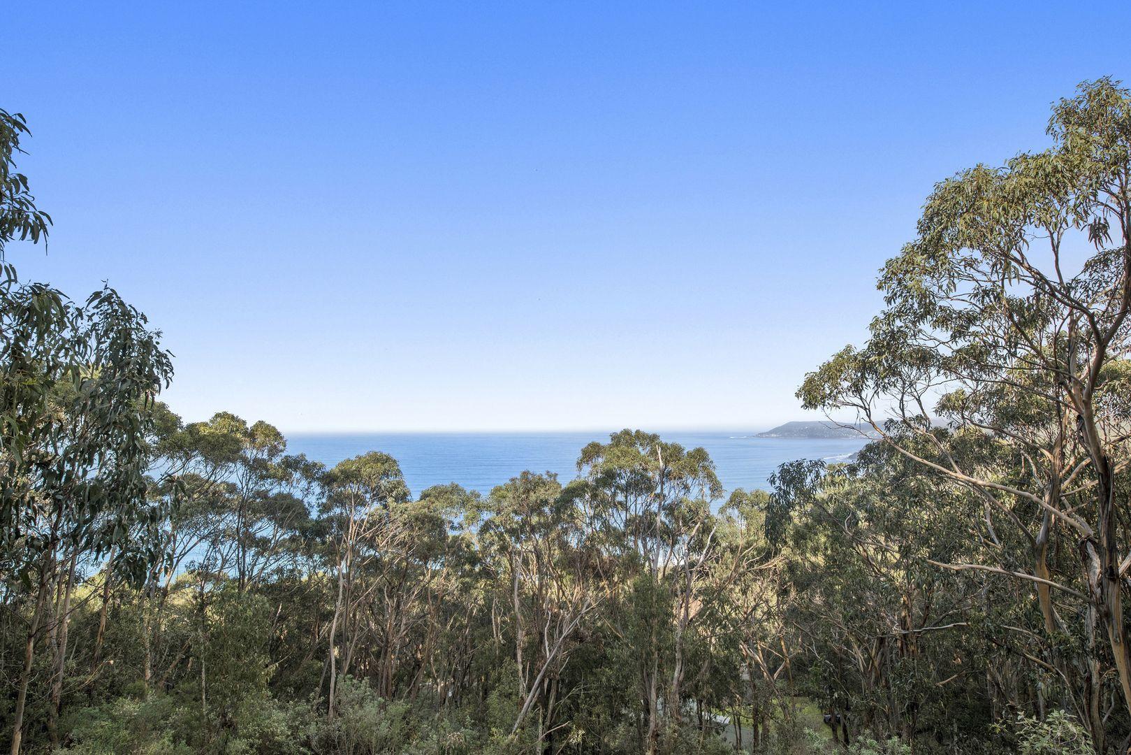 1188 Great Ocean Road, Big Hill VIC 3231, Image 1