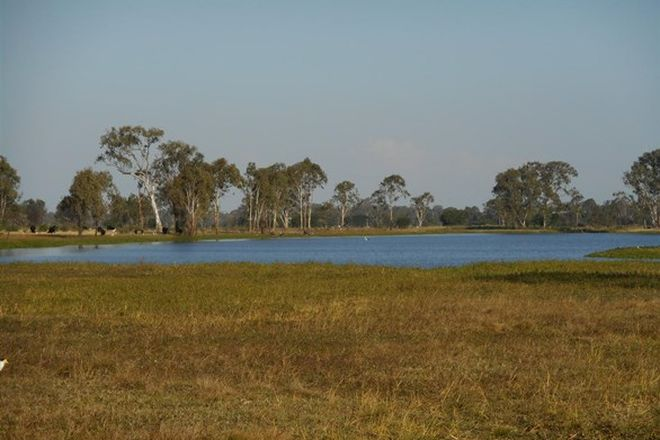 Picture of Lot 241 Titman Road, FAIRY BOWER QLD 4700