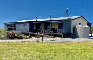 Picture of 17499 Flinders Highway, Elliston SA 5670