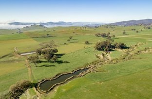 Picture of 404 Sylvia's Gap Road, Tumblong NSW 2729