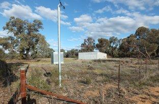 Picture of 20 Cedar Street, West Wyalong NSW 2671