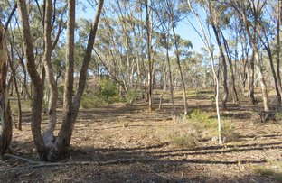 Picture of CA 8A Bobsiens Hill Road, Wedderburn VIC 3518