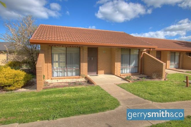 Picture of 1-13 Shalom Place, HORSHAM VIC 3400