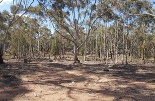 Picture of 538-735 Laheys Creek Road, Mudgee NSW 2850
