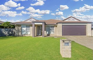 Picture of 6 Grevillia Court, Griffin QLD 4503