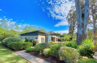 Picture of 4 Kinchela Court, Bright VIC 3741