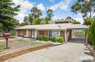 Picture of 22 Palm Avenue, Spring Gully VIC 3550
