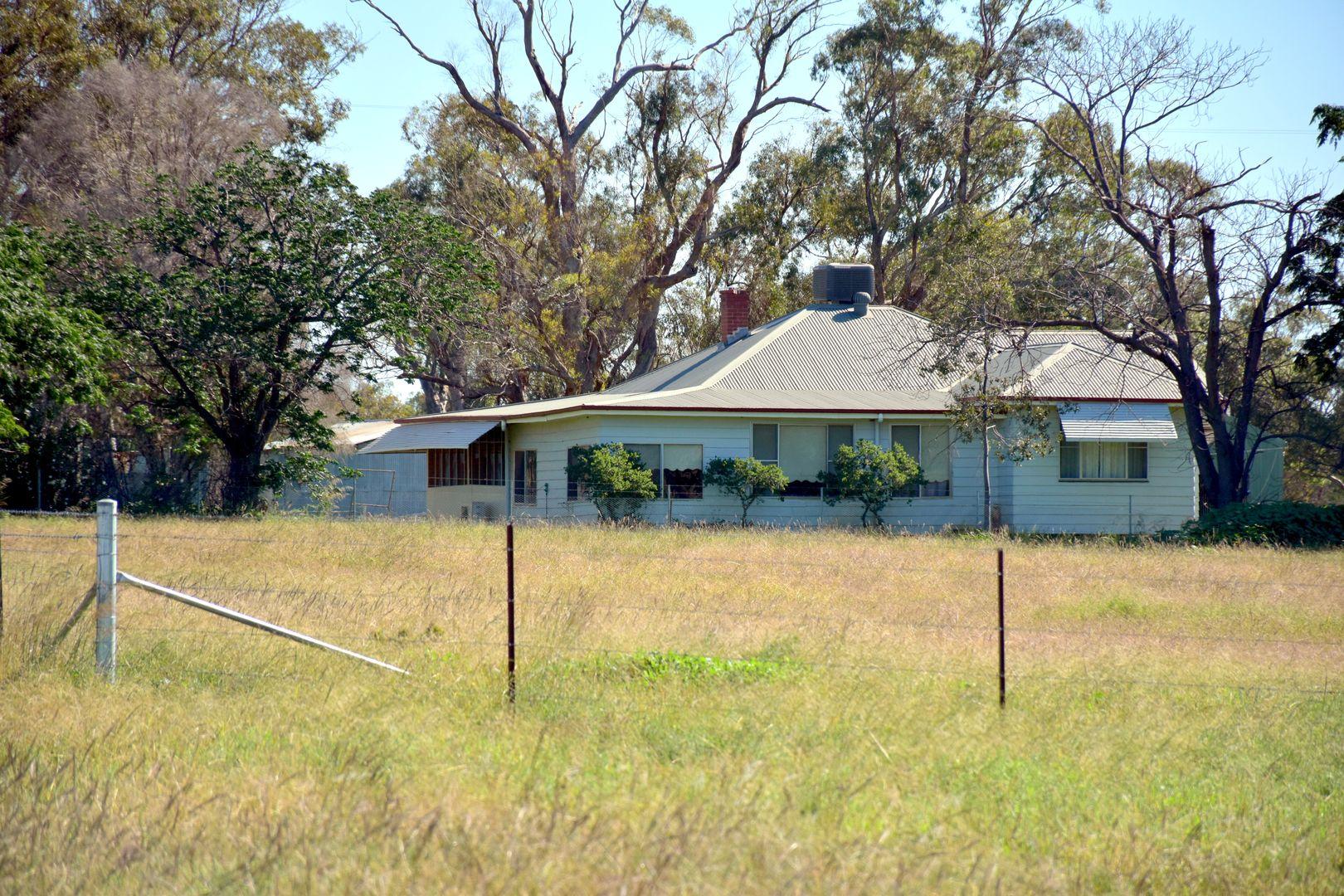 """""""Tara""""/695 Bairstows Lane, Gilgandra NSW 2827, Image 2"""