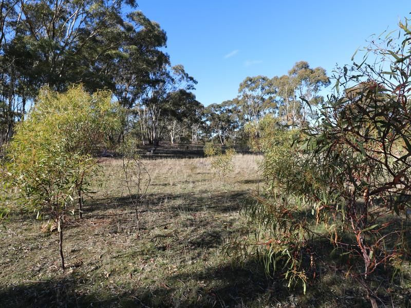 Lot 15 Josephine Drive, Wedderburn VIC 3518, Image 2