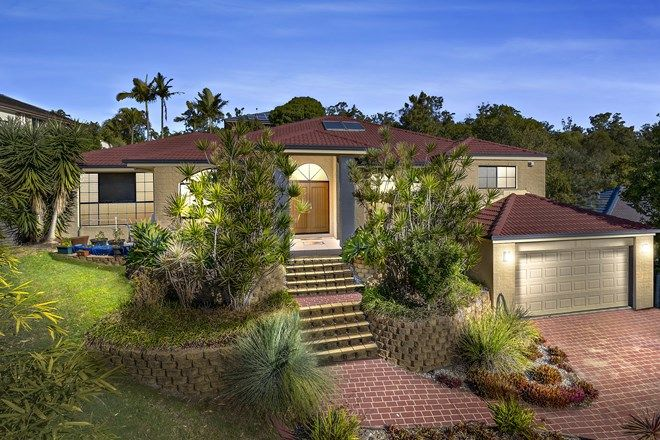 Picture of 8 Black Bean Court, ALBANY CREEK QLD 4035