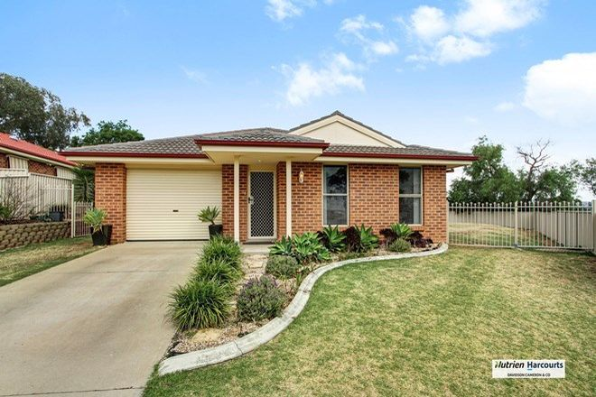 Picture of 20 Mountain Gum Road, TAMWORTH NSW 2340
