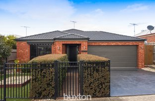 Picture of 11 Redgum Court, Belmont VIC 3216