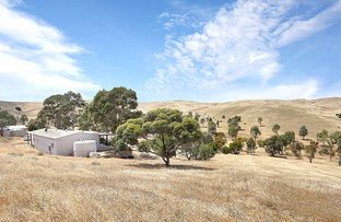 Picture of 490 & 500 Diprose Road, Burra SA 5417