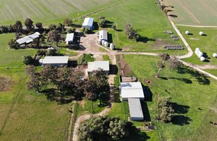 Picture of 4660 Midland Highway, Girgarre East VIC 3616
