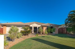 Picture of 17 Diamond Sand Drive, Upper Coomera QLD 4209