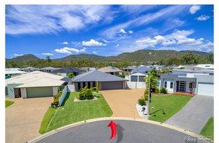 Picture of 12 Waratah Court, Norman Gardens QLD 4701