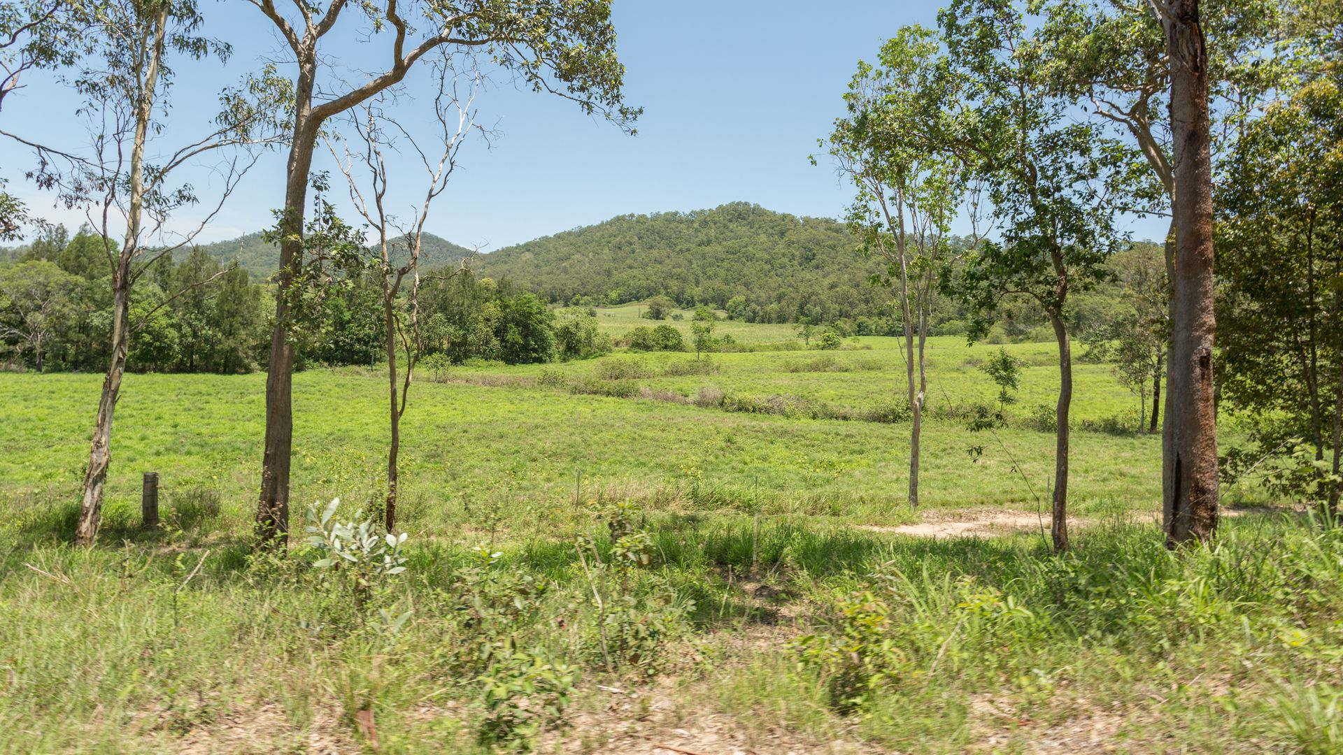 168 Sams Road, Dows Creek QLD 4754, Image 2