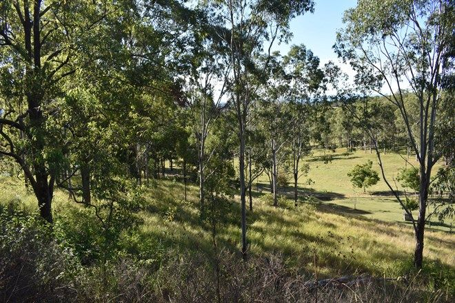 Picture of 1217 Dyraaba Road, KYOGLE NSW 2474