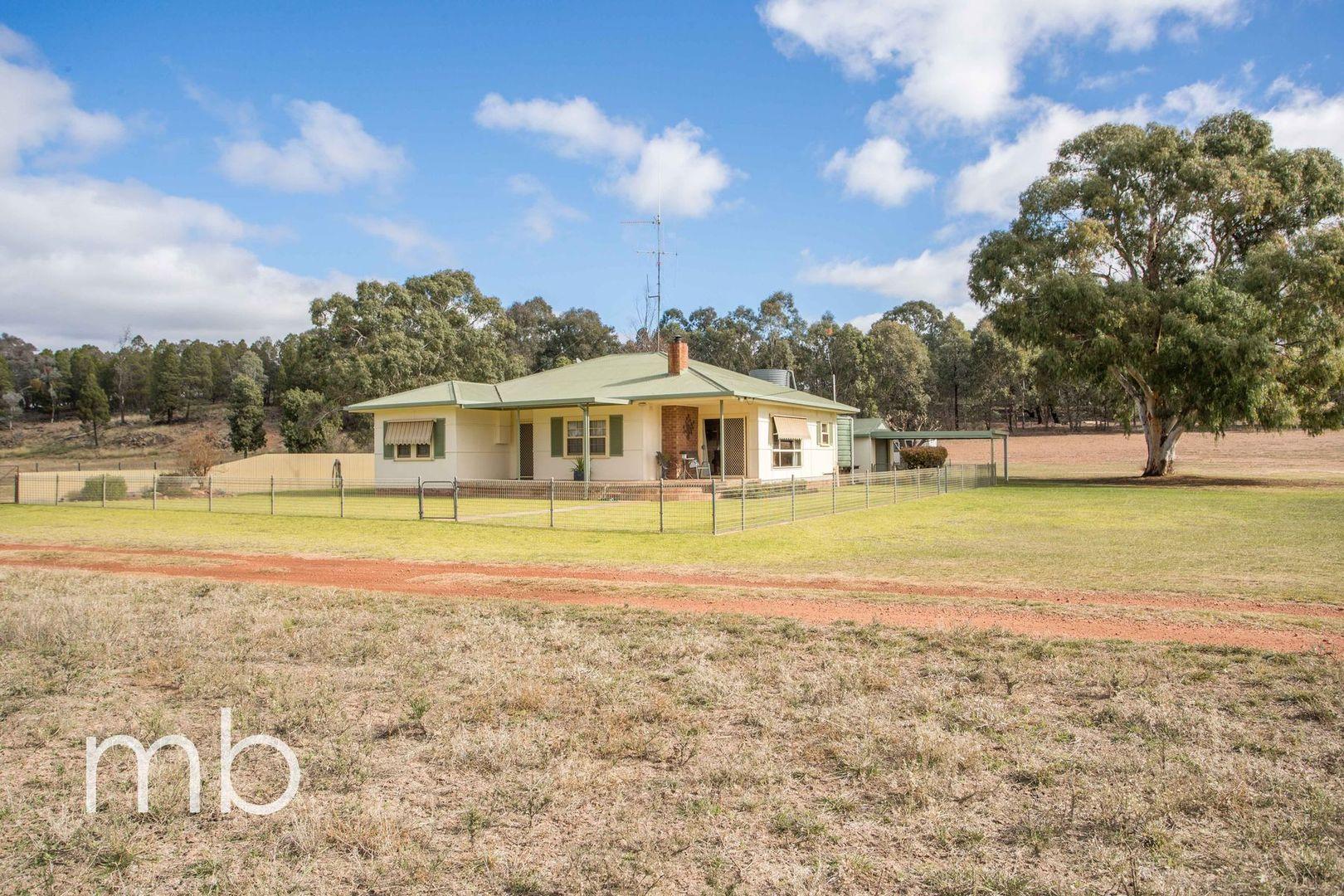 966 Peak Hill Road, Baldry NSW 2867, Image 1