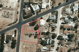 Picture of 227,230,232 Pigeon Flat Road, Bordertown SA 5268