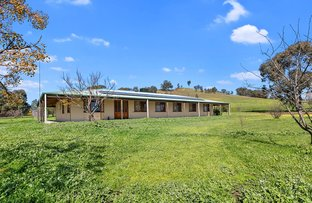 Picture of 572 MCCRACKENS ROAD, Locksley VIC 3665