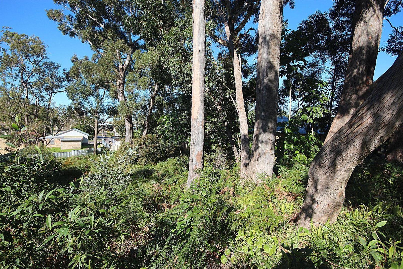 8 Geer Close, Lemon Tree Passage NSW 2319, Image 1