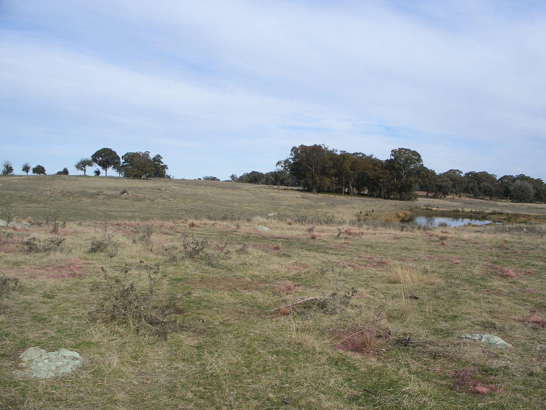 Bathurst NSW 2795, Image 1