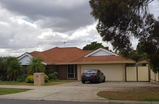 Picture of 28 Woodbridge Drive, Cooloongup WA 6168