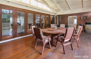 Picture of 17 Proctor Street, Flagstaff Hill SA 5159