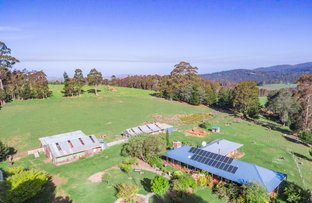 Picture of 123 Vinces Saddle Road, Lower Longley TAS 7109