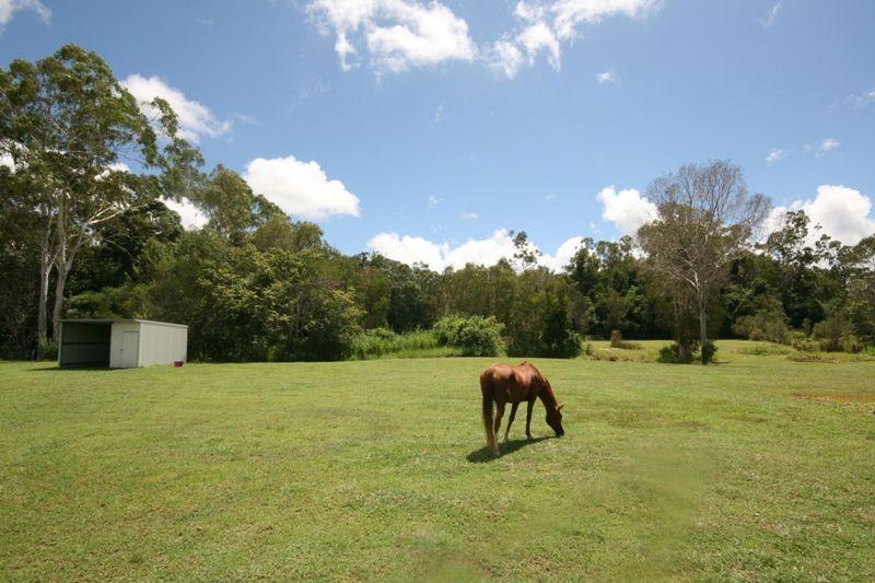 13 Pandanus Place, Speewah QLD 4881, Image 2
