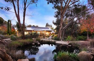 Picture of 2A Penhallurick Street, Campbells Creek VIC 3451