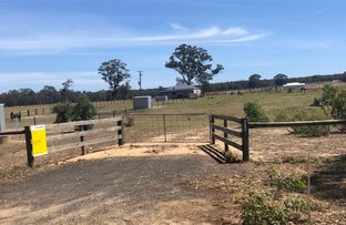 Picture of 216 Mustons Lane, Heyfield VIC 3858