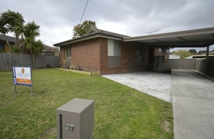Picture of 37 Murphy Crescent, Traralgon VIC 3844