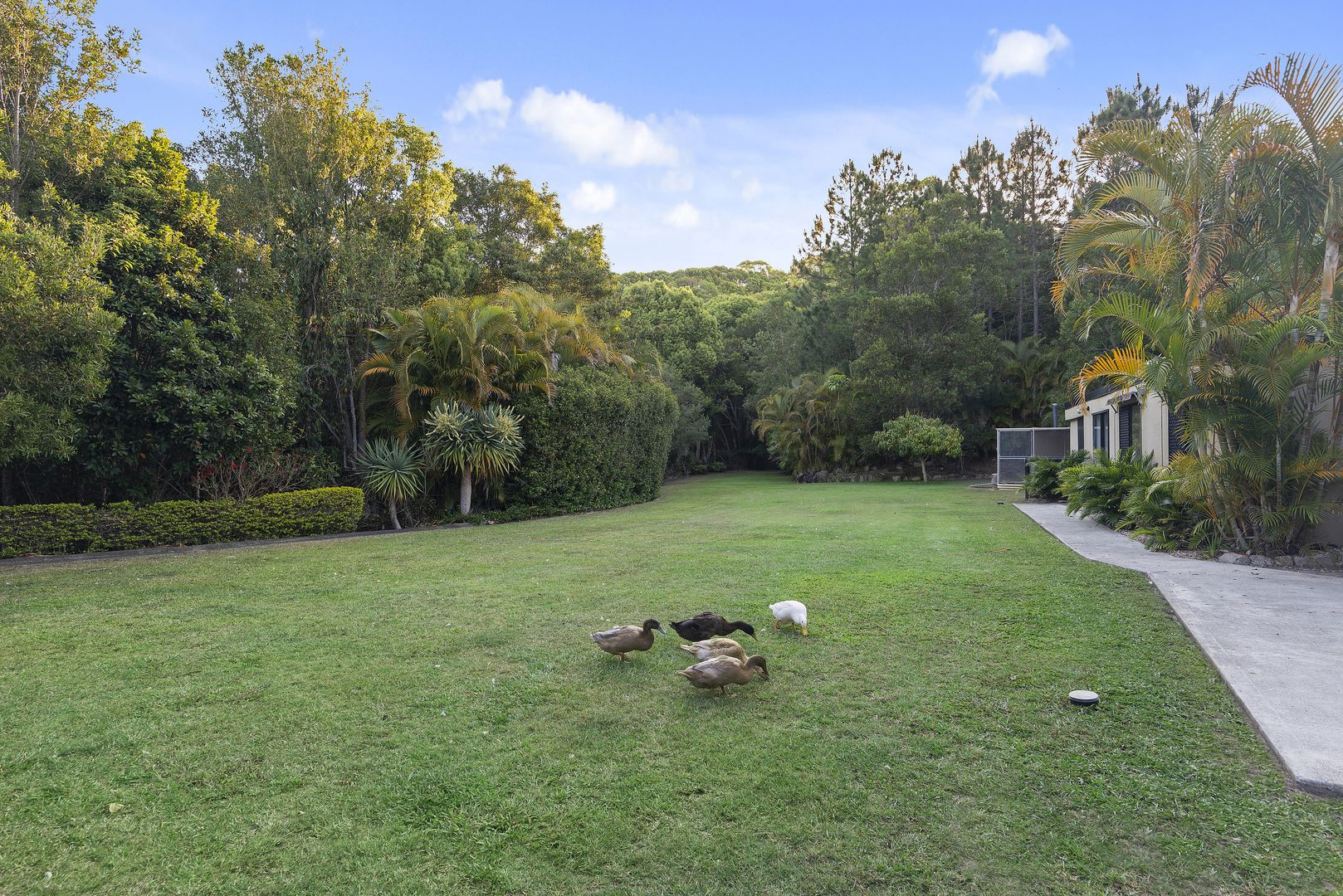 37 Fordyce Close, Currumbin Valley QLD 4223, Image 1