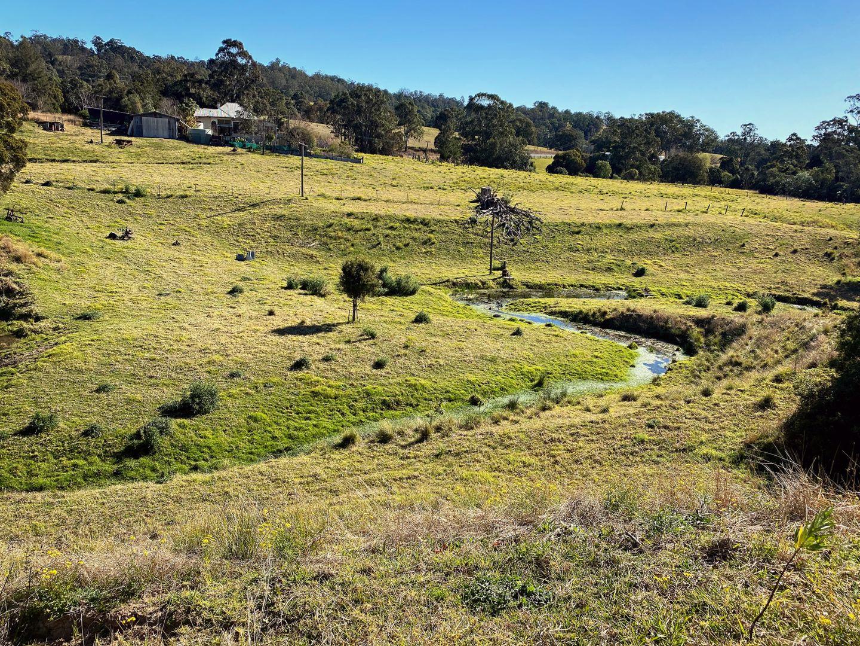 1011 The Bucketts Way, Tugrabakh NSW 2422, Image 1