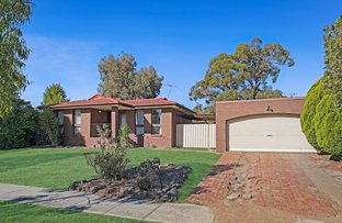 Picture of 25 James Cook Drive, Endeavour Hills VIC 3802